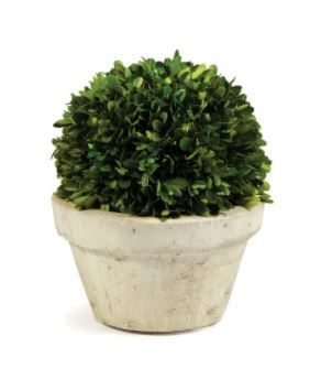 15 inch Boxwood Ball Preserved Plant  Green  In Topiary