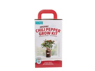 Back to the Roots 25200 Self Watering Planter Grow Kit