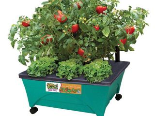 Emsco Group 2360 little Pickers Child s Garden Grow Box Teal
