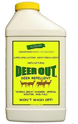 Deer Out 32oz Concentrate Deer Repellent exp  08 21 2023