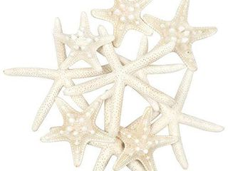 Jangostor 10 PCS Starfish 2 6 Inch Mixed Ocean Beach Starfish Natural Colorful Seashells Starfish Perfect for Wedding Decor Beach Theme Party  Home Decorations DIY Crafts  Fish Tank