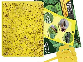 Kensizer 20 Pack Dual Sided Yellow Sticky Gnat Traps for Indoor Outdoor Flying Plant Insect like Fungus Gnats  Whiteflies  Aphids  leaf Miners  Thrips  Other Flying Plant Insects   6x8 Inches