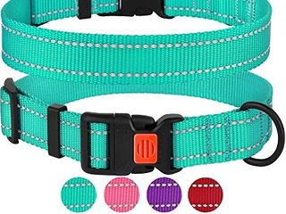 CollarDirect Reflective Dog Collar  Safety Nylon Collars for Dogs with Buckle  Outdoor Adjustable Puppy Collar Small Medium large  Neck Fit 14 18  Mint Green
