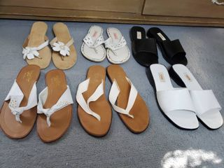lot of 6 Pairs  Woman Shoes  Size 8 5  Talbots