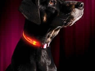 lED Dog Collar   USB Rechargeable   Makes Your Dog Visible  Safe   Seen