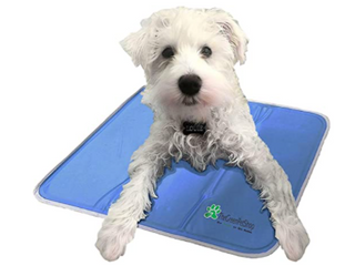 The Original Patented Cool Pet Pad  Small Up To 15lbs 11 8 x15 7  No Electricity  No Refrigeration  No Water