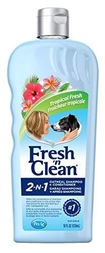 Fresh  n Clean 2 in 1 Oatmeal Conditioning Shampoo  Tropical Scent  18 oz