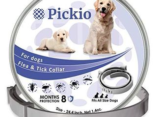 Dog Collar for 8 Month Validity Period Adjustable for Small large