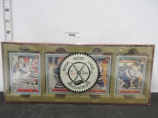 HOCKEY CARDS  WESTERN HOCKEY lEAGUE
