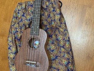 Ukulele in a bag