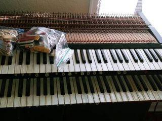 Organ parts