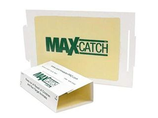 Catchmaster 72MAX Pest Trap  36Count  White