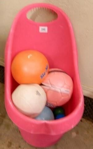 Roll Around Caddy w Asst  Balls