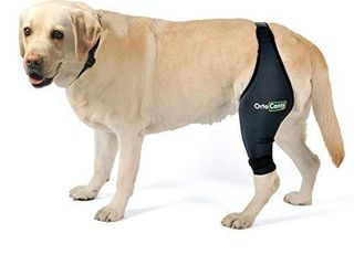 Ortocanis Original Knee Brace for Dogs with ACl  Knee Cap Dislocation  Arthritis   Keeps The Joint Warm   Extra Support   Reduces Pain and Inflammation   Size M   Right leg