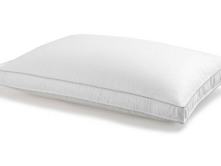Wamsutta Dream Zone King Size Goose Down Pillow