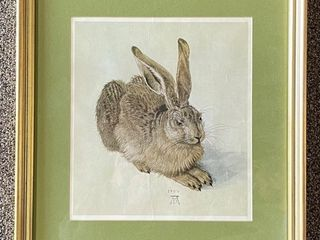 Albertian Viennas  1471 1528   Young Hare  Print