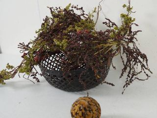 Beautiful Metal Basket w Flowers and a Feather Ball Decor