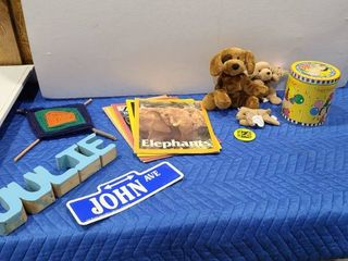 Zoo books  Beanie Babies  and other assorted items including the bag