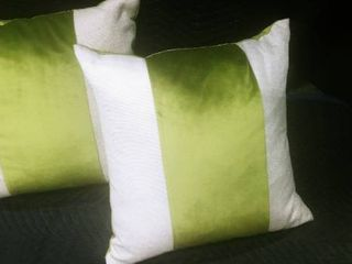Elite Home green and cream colored decorative pillows 20 x 20 in
