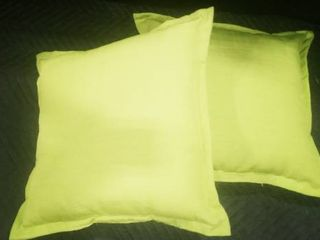 Green decorative pillows 19 x 19 in