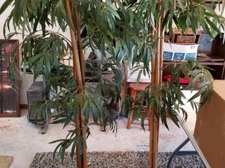 lot of 2 Tall Faux Trees   Over 5 Feet Tall