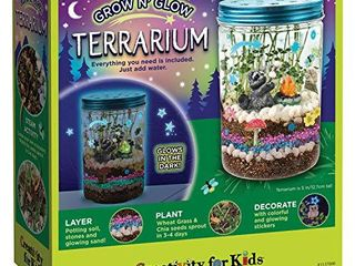 Creativity for Kids Grow  N Glow Terrarium Kit for Kids   Science Activities for Kids  Packaging May Vary