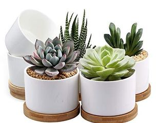 Succulent Pots  ZOUTOG White Mini 3 15 inch Ceramic Flower Planter Pot with Bamboo Tray  Pack of 6   Plants Not Included