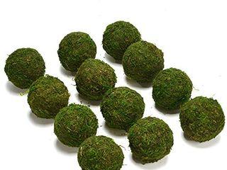 Byher Natural Green Moss Decorative Ball Handmade  2 Set of 12