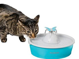 PetSafe Drinkwell Butterfly Pet Drinking Fountain for Cats and Dogs  Free Falling Adjustable Streams of Fresh  Flowing Water  Easy to Clean  50 oz Capacity