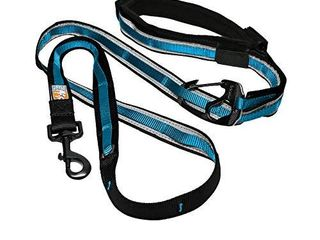 Kurgo 6 in 1 Hands Free Dog leash   Reflective Running Belt leash for Dogs  Crossbody   Waist Belt leash  Carabiner clip  Padded Handle  For Training  Hiking  or Jogging  Quantum leash  Coastal Blue