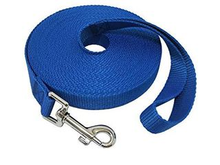 Nylon Training Dog leash for Small Medium large Dogs  15ft 20ft 30ft 50ft long leash Dog Puppy lead for Obedience Recall Training  Camping  30ft  Blue