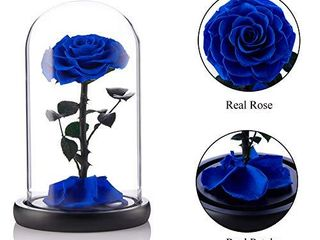 puto Preserved Real Rose Eternal Rose in Glass Dome Gift for Her Thanksgiving Christmas Valentine s Day Birthday Mother s Day  Blue  large