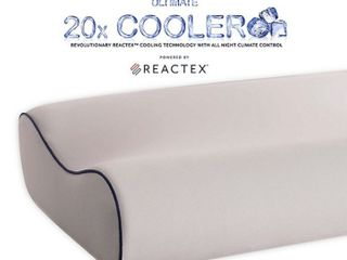 Therapedic Polar Nights 20x Cooling Contour Memory Foam Bed Pillow