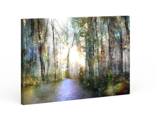 Copper Grove Roozbeh Bahramali s  Hope  Gallery Wrapped Canvas 32x48