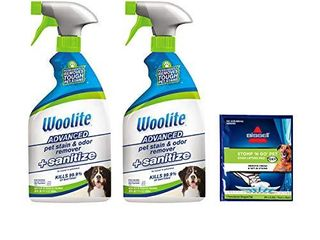 Woolite Advanced Pet Stain   Odor Remover   Sanitize  2618  22oz  Pack of 2