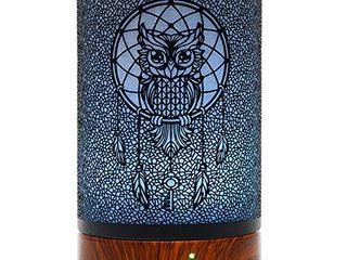 Ultrasonic Cool Mist Aromatherapy Essential Oil Diffuser 100ml Capacity Metal Aromatherapy Diffuser  Owl