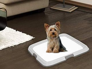 PAWISE Dog Indoor Potty Kit with 12pcs Quilted Pee Pads  Puppy Pad Floor Holder Tray  23 6 X23 6  Ready for Use