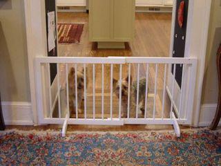 Cardinal Gates Step Over Dog Gate  28 51 75 W x 20 H  White