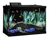 Tetra Aquarium Kit  20 gallon  Color Fusion