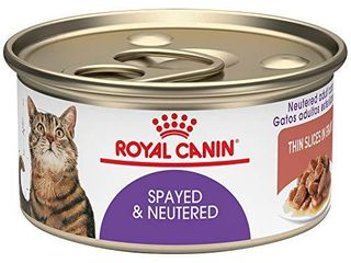 Royal Canin Feline Health Nutrition Spayed   Neutered Thin Slices In Gravy Canned Cat Food  3 oz Can  Pack of 24