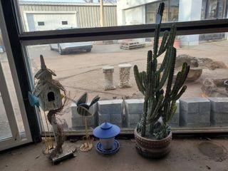 Cactus  Birdhouse  Bird Feeder  Etc