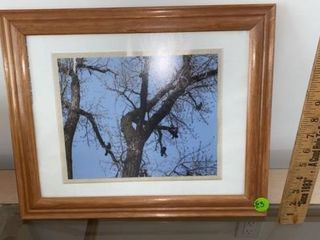 BIRDS IN TREES BY JOYCE PRINCE