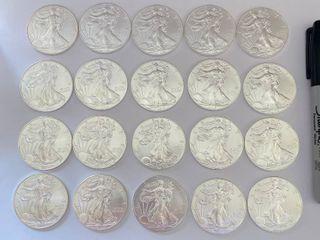2013 American Silver Eagle Roll  20  Coins GEM  999   20 Ounces of Fine Silver   SUPER BUY   BID NOW