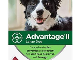 Advantage II 6 Dose large Dog Flea Prevention  Topical Flea Treatment for large Dogs 21 55 Pounds