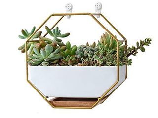 VanEnjoy 7  White Ceramic Wall Planters Vase and Copper Drainage Hole with Bamboo Tray   Succulent Pot Air Plants Mini Cactus Artificial Flowers Hanging Geometric Hexagon Wall Decor  Gold Metal