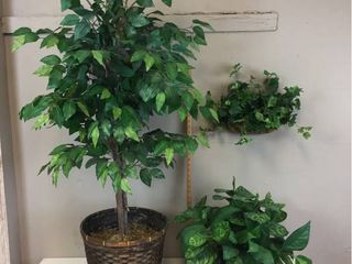 4 5 Ft  Faux Ficus Tree Basket potted  Variegated Faux Plants Basket potted  Faux Ivy in Brass wall planter