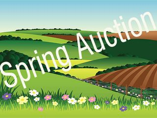 Online Only - 18th Annual Spring Consignment Auction