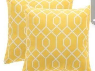 Outdoor Pillow Set of two   16 16