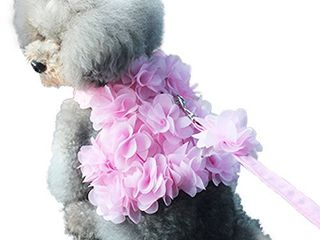 NACOCO Dog Flower Harness Waking Vest Harness with Pet leash for Halloween Cat Puppy Girl  M