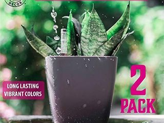 Gardenix Decor 5  Self Watering pots for Indoor Plants   Flower Pot with Water level Indicator for Plants  Grow Tracking Tool   Self Watering Planter Plant Pot 2 Pack Gray